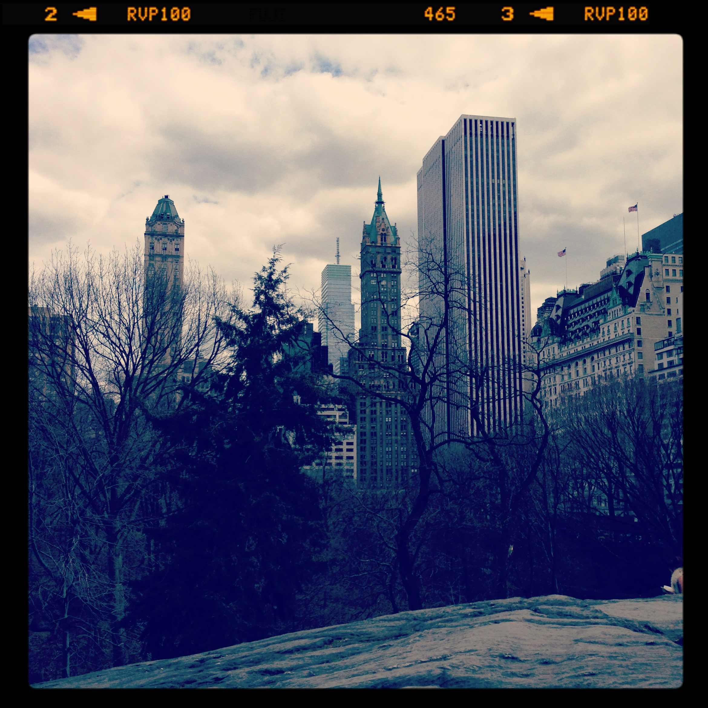 Instagram Weekend: March Madness & Central Park Stroll